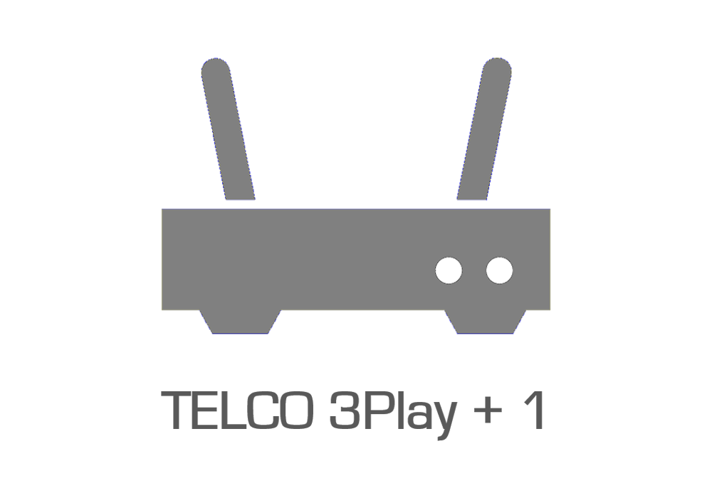 TELCO 3Play + 1